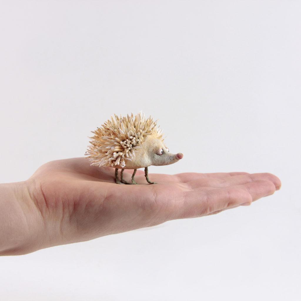 Albino Hedgedog