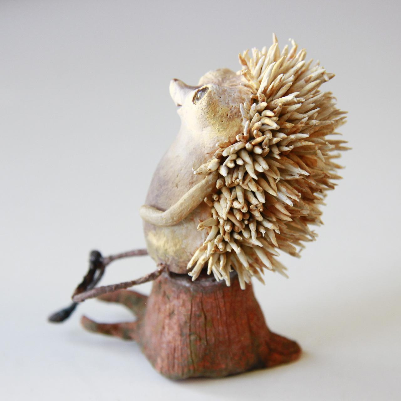 Wood Hedgehog